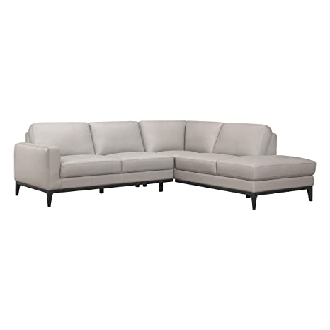 Astonishing Amazon Com Lexicon Orion 101 X 87 Leather Sectional Sofa Pabps2019 Chair Design Images Pabps2019Com