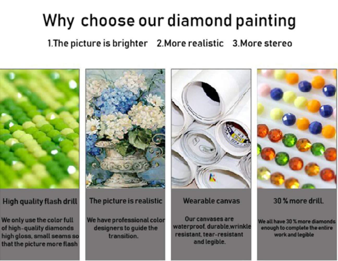 23Cm Dandelion Flower Diamond Picture of Rhinestone Diamond Embroidery 17 Diamond Drawing Gems Art Picture Embroidery DIY 5D Diamond Painting