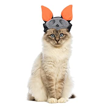cat halloween costume by lesypet bat pumpkin hat for cats for yorkies maltese