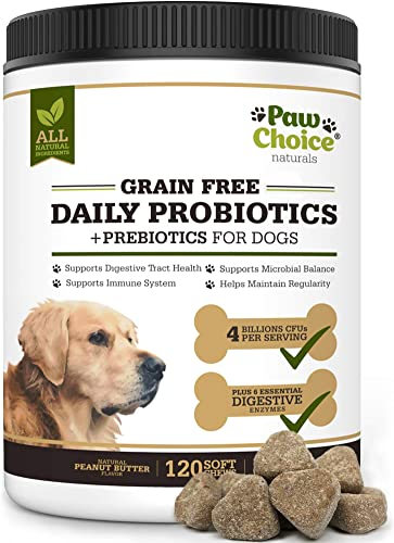 Paw Choice Grain Free Probiotics for Dogs with Prebiotics, Digestive Enzymes – 120 All Natural Chews for Healthy Gut, Digestion, Immune System, Diarrhea Relief – Made in USA – Peanut Butter Flavor