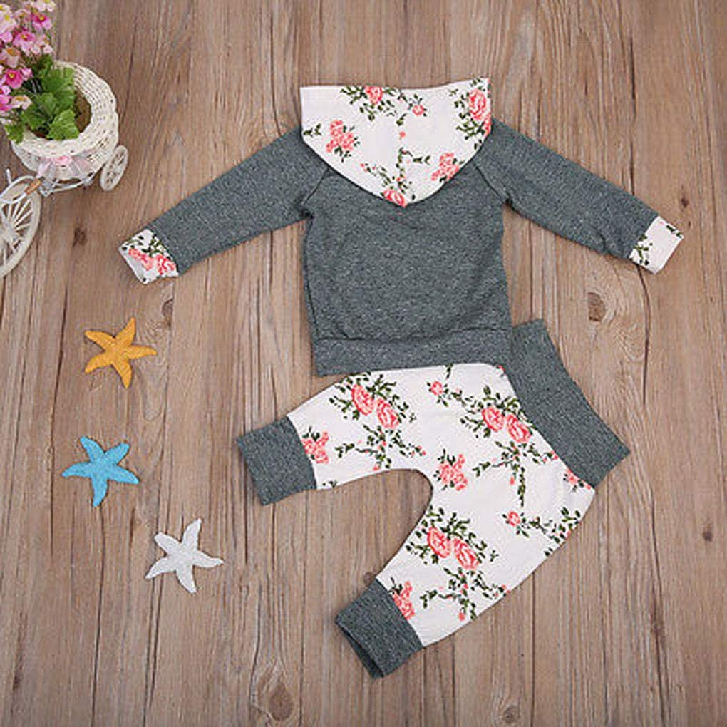 Kids Baby Boy Girls Active Sweatshirts Sweatsuit Cotton Hoodie Tracksuit Long Sleeve Sportswear Outfit Clothes Set