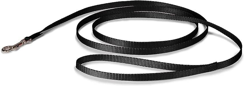 """PetSafe Nylon Leash, 3/8"""" x 6', Black"""