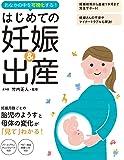 はじめての妊娠&出産 〜おなかの中を可視化する!