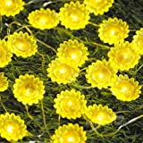 Sunflower Decorating Lights String, Impress Life Spring Garden Helianthus 10 ft Copper Wire 40 LEDs Battery-Powered with Dimmable Remote for Wedding, Covered Outdoor, Easter Holiday, Home Decorations