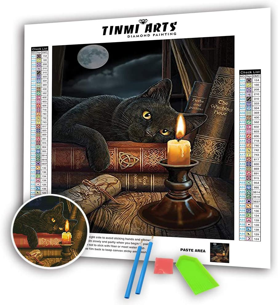 NEW UNOPENED Counted Cross Stitch Kit Charivna Mit BT-222 Crystal Art Black cat Flowes Pillow Summe deams