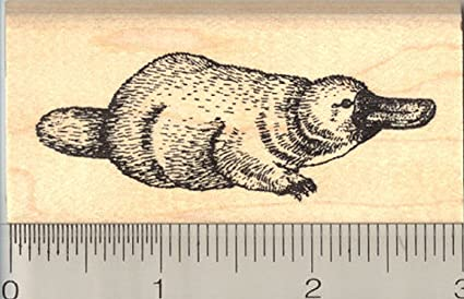 Australia Rubber Stamp Mounted Wood Block Art Stamp