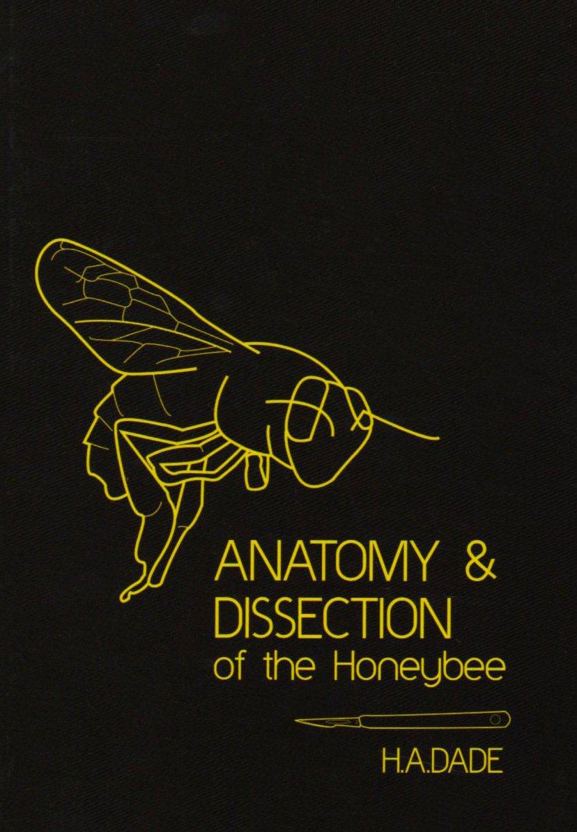 Anatomy and Dissection of the Honeybee: Amazon.co.uk: International ...