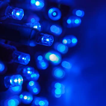 Image Unavailable - Amazon.com: 5mm LED Wide Angle Blue Prelamped Light Set, Green Wire