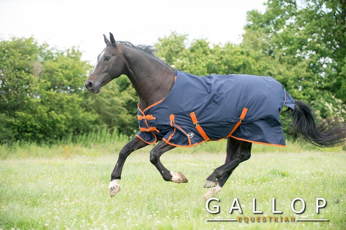 Gallop Trojan - Manta de caballo sin cuello, 100g - EU 115cm