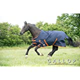 Gallop Trojan 600d Standard Neck 100g Turnout Rug