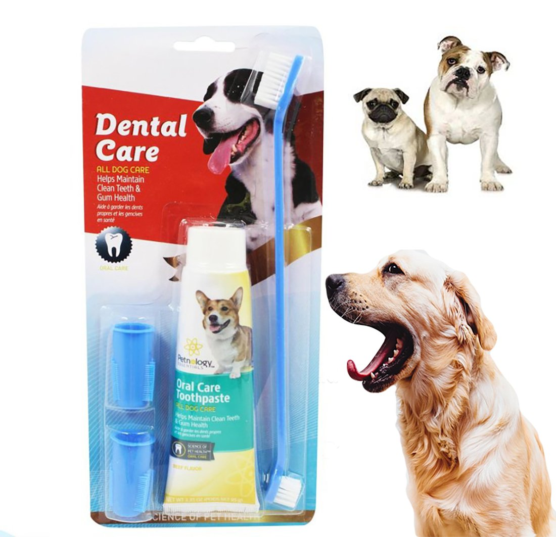 Pet Dental Care Set – Dual Headed Dental Hygiene Brushes, Finger Toothbrush And Toothpaste for Small to Large Dogs, Cats, & Most Pets