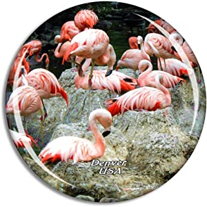 Weekino USA America Flamingo Denver Zoo Fridge Magnet Travel Souvenir City Collection 3D Crystal Glass Gift Strong Refrigerator Sticker