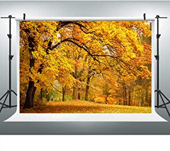 Amazon.com : Autumn Yellow Park Fall Leaves Backdrop for