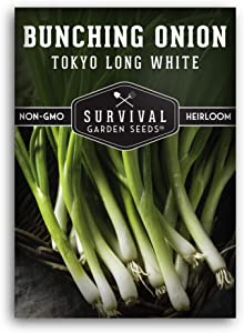 Survival Garden Seeds - Tokyo Long White Onion Seeds for Planting - Packet with Instructions Packet with Instructions to Plant and Grow in Your Home Vegetable Garden - Non-GMO Heirloom Variety