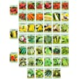 Set of 43 Assorted Vegetable & Herb Seeds - 43 Varieties - Create a Deluxe Garden All Seeds are Heirloom - 100% Non-GMO by Bl