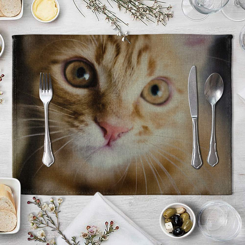 memorytime Cute 3D Cat Print Placemat Pad Linen Dining Table Insulation Mat Home Decor Kitchen Dining Supplies - 6# by memorytime (Image #8)