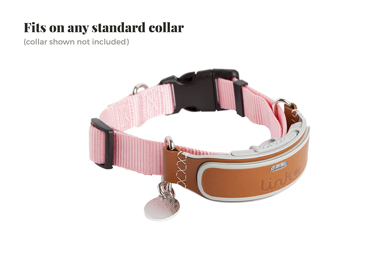 amazon com link akc smart dog collar gps location tracker