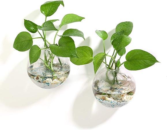 Wall Hang Glass Flower Planter Vase Terrarium Decoration Pot Garden Container
