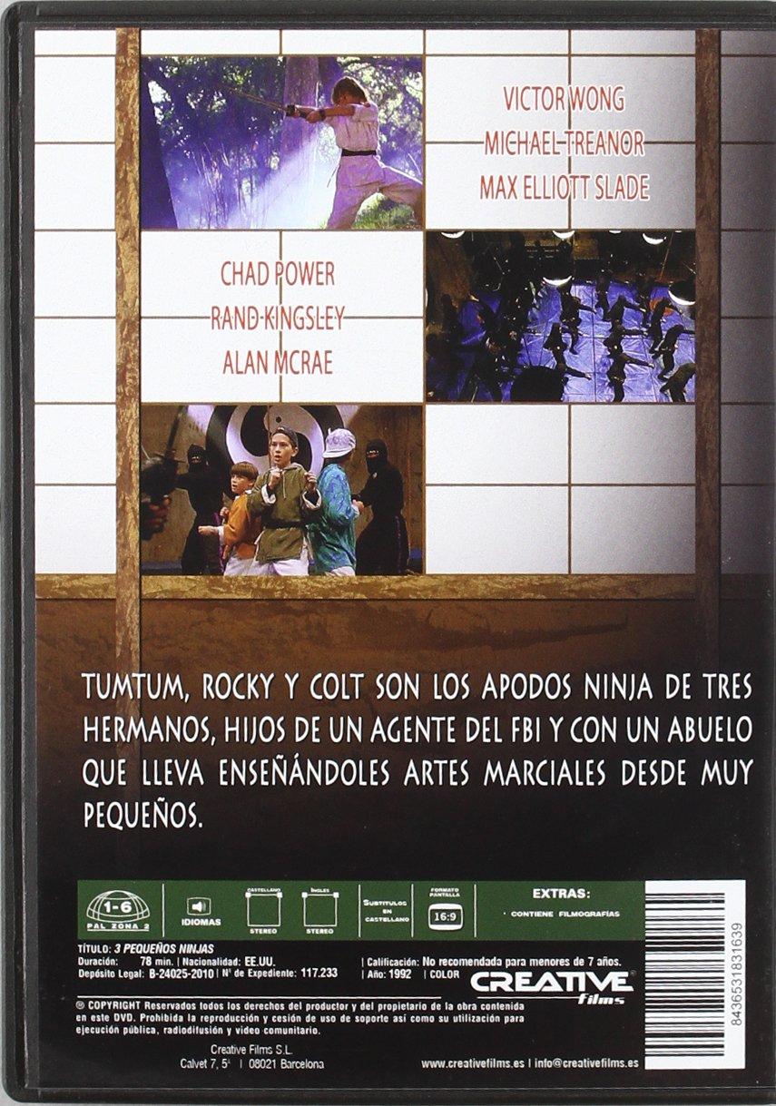 3 Pequeños Ninjas [DVD]: Amazon.es: Victor Wong, Michael ...