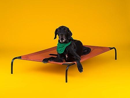 Coolaroo-Elevated-Dog-Bed