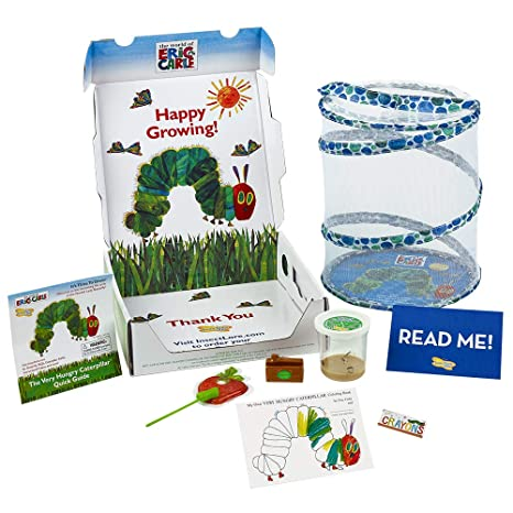 Amazon.com: Insect Lore The Very Hungry Caterpillar Butterfly ...