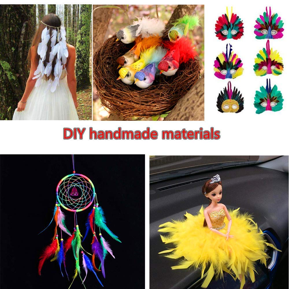 Rgargga Plumes Colorées, 250pcs Naturel Multicolore Plume Décoration pour DIY Arts Crafts, Idéal pour Costumes, Chapeaux, Décoration d\'intérieur Fete Mariage Anniversaire