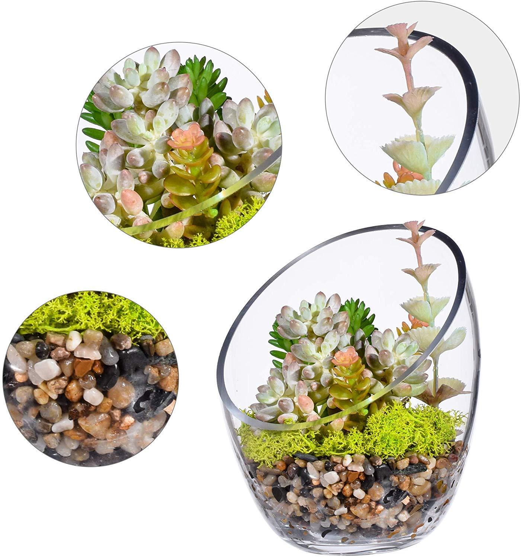 KnikGlass Transparente Jarr/ón Redondo de Cristal con Forma de Globo para Plantas y terrarios y Caramelos