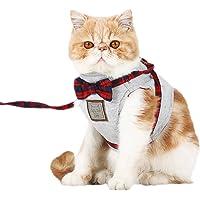 PETCUTE Correas para Gatos Arnés para Gatos a