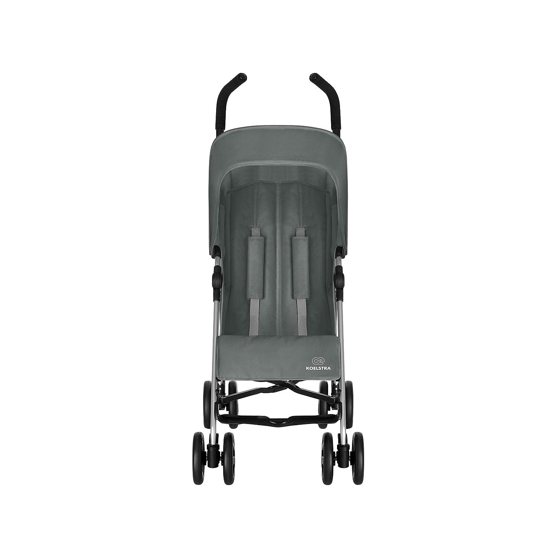 koelstra 8373 Simba T4 Buggy gris
