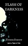 Flash of Darkness