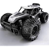 Gizmovine Remote Control Car, 1:14 Large Size High Speed Racing Off Road RC Cars with 2 Rechargeable Batteries…