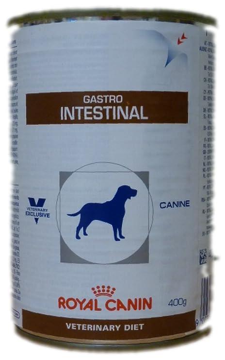 Royal Canin Gastrointestinal- Comida para perros de edad adulta, 400 g (Paquete de
