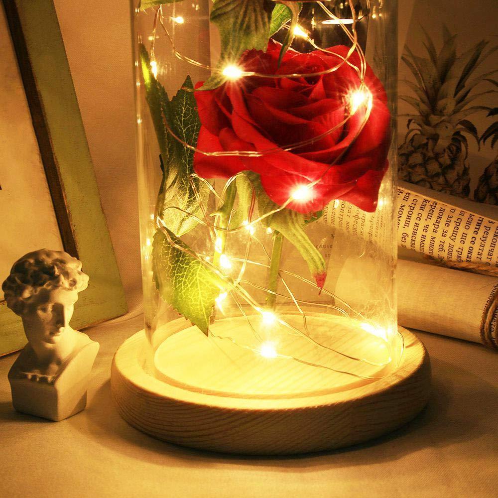 Enchanted Rose La Belle Et La B/ête P/étales De Rose En Soie Rouge Et Lumi/ère Led Avec Fallen En D/ôme En Verre Sur Une Base En Bois Magic Cadeaux D/écoration de Maison pour Les Anniversaire de Mariage