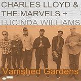 Vanished Gardens [Vinilo]