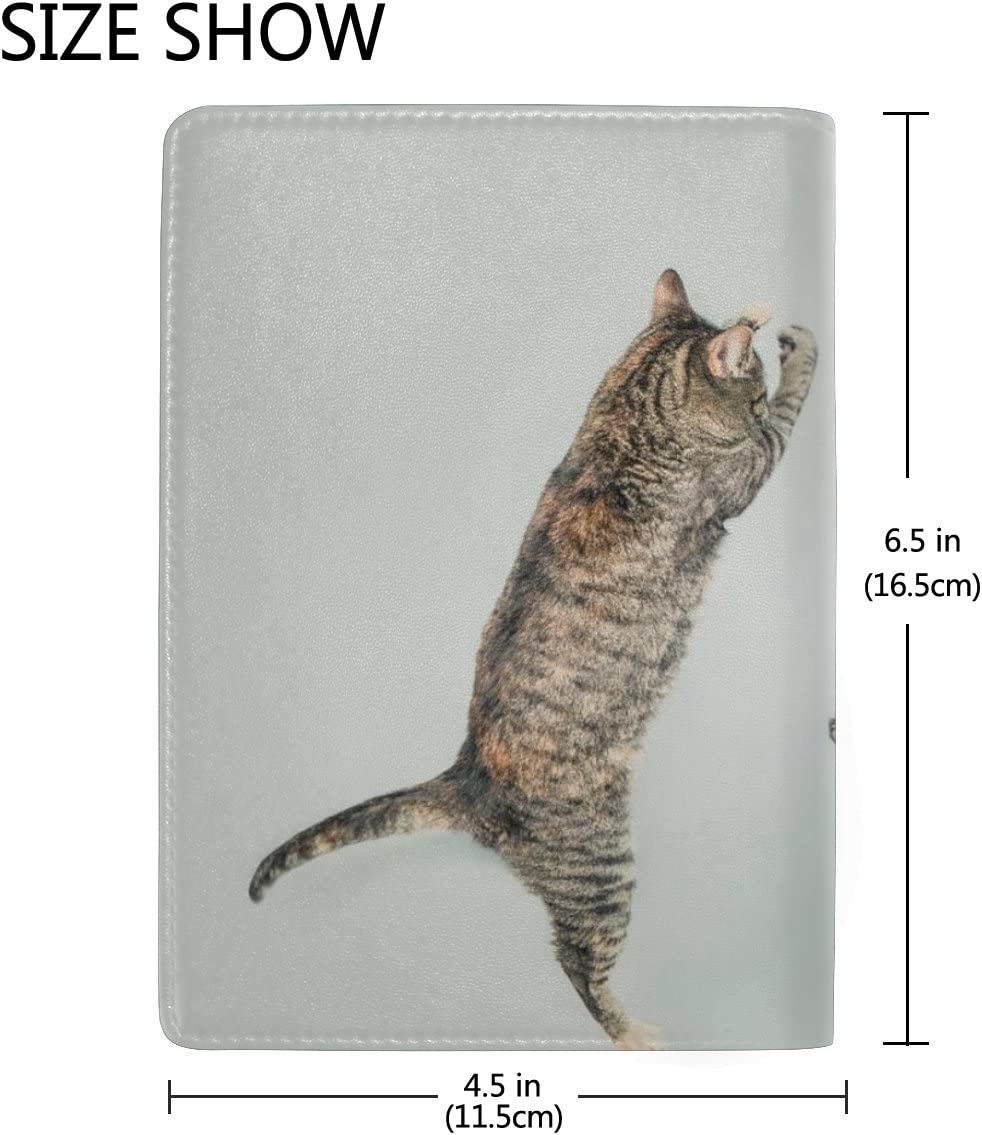 Cats Grey Real Leather Passport Holder Wallet Case Cover for Men Women