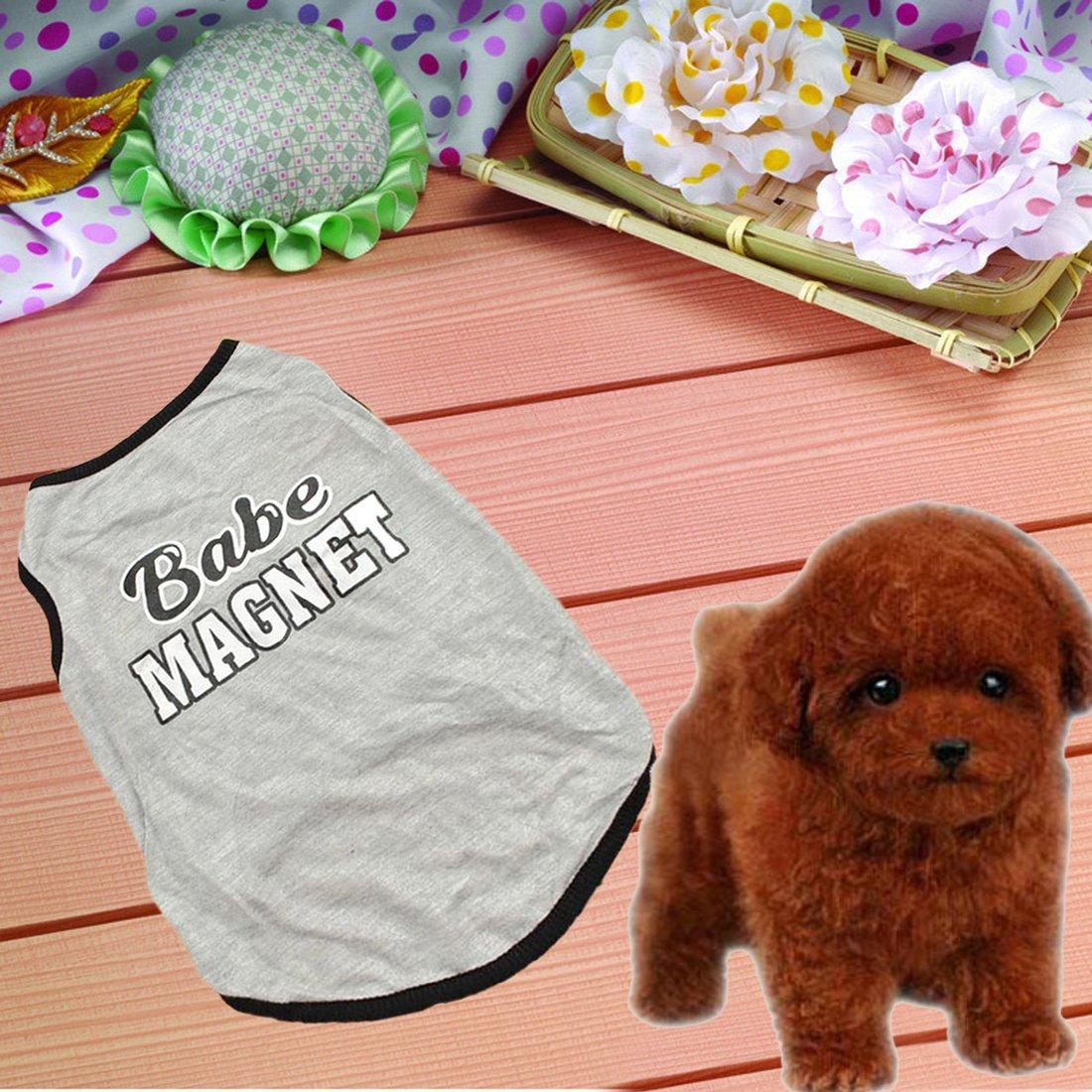 Camiseta de verano CY-buity para perro con el texto en ingl/és Hug Me Kiss Me dise/ño a rayas