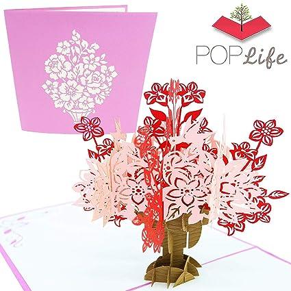PopLife Cards Florezca el ramo y la tarjeta emergente del ...