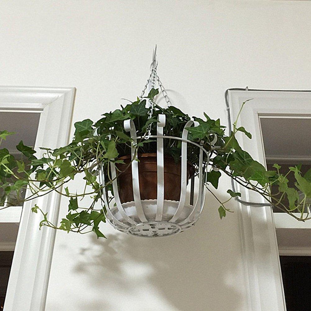 Equerre De Suspension Pour Plantes Fleurs Mural Crochet Pot De