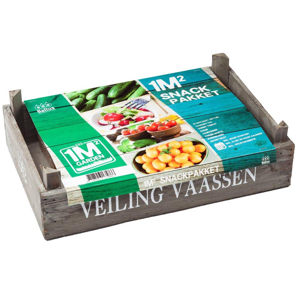 geschenkartikel-shopping Pflanz-Set Snack Tomate Rettich Gurke Samen Garten Saatgut Karotte Sellerie (groß)