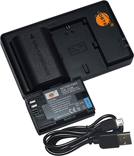 DSTE 2PCS LP-E6 LP-E6N(2600mAh/7.4V) Batería Cargador Compatible para Canon EOS R, EOS 5D Mark II, EOS 5D Mark III, EOS 6D, EOS 7D, EOS 60D, EOS 60Da, EOS 70D, EOS 90D, XC10,