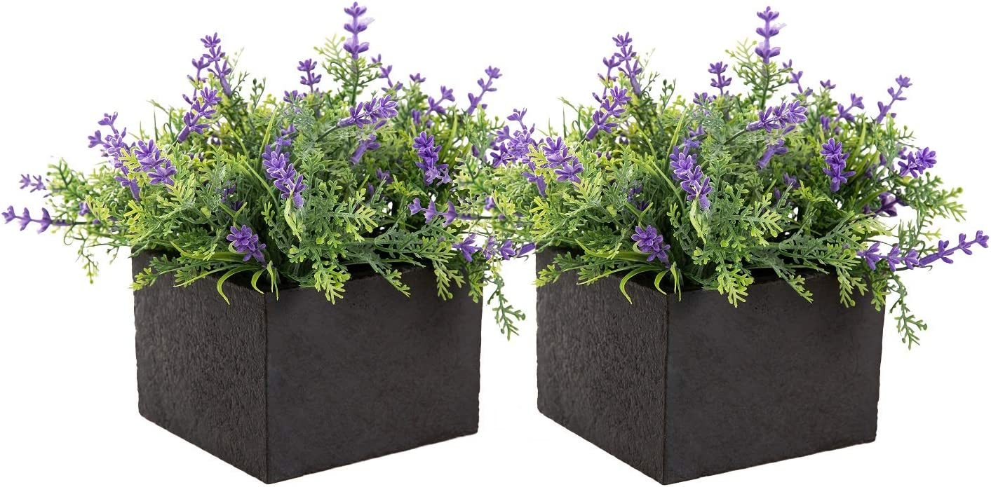 Flojery Artificial Lavender Flowers Pot Realistic Fake Lavender Plant for Home Table Office Decor-Pack of 2