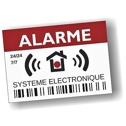 Decooo.be Pegatina disuasoria de alarma (12 unidades, en ...