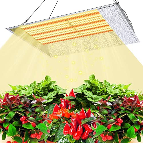 Phlizon CREE COB Series 500W LED Plant Grow Light Full Spectrum Indoor Plants Light Growing Lamp CREE COB LED Grow Light with Monitor Adjustable Rope -500W Actual Power 100watt