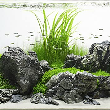 5 KG GREY MOUNTAIN ROCK STONE AQUARIUM IWAGUMI STYLE SET OF STONES  AQUASCAPING: Amazon.co.uk: Pet Supplies