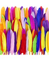 LoveS 250 PCS Nature Feather, Assorted Colors, Handmade Decoration Feather