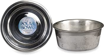 Polar Bowl by Neater Pet Brands