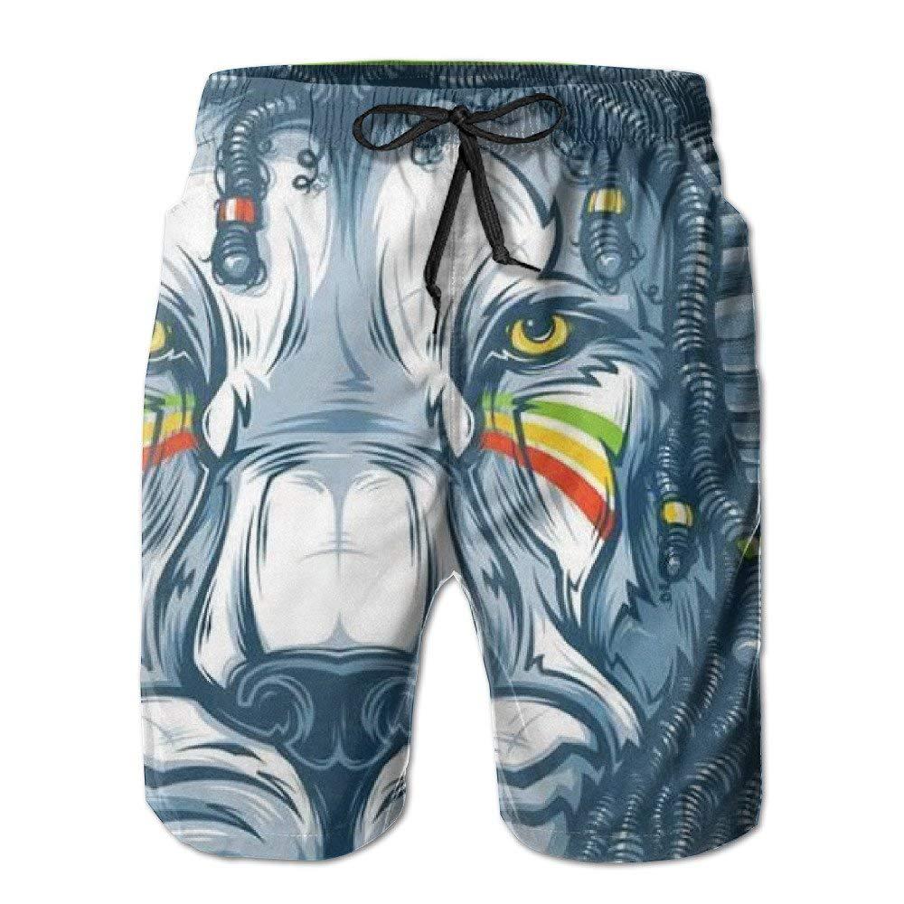 Ding Rasta Lion Rastafarian Mens Quick Dry Beach Shorts Swimwear Swim Trunks Board Shorts with Pocket
