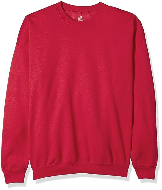 cbd87478a7234 Hanes Men's Ecosmart Fleece Sweatshirt