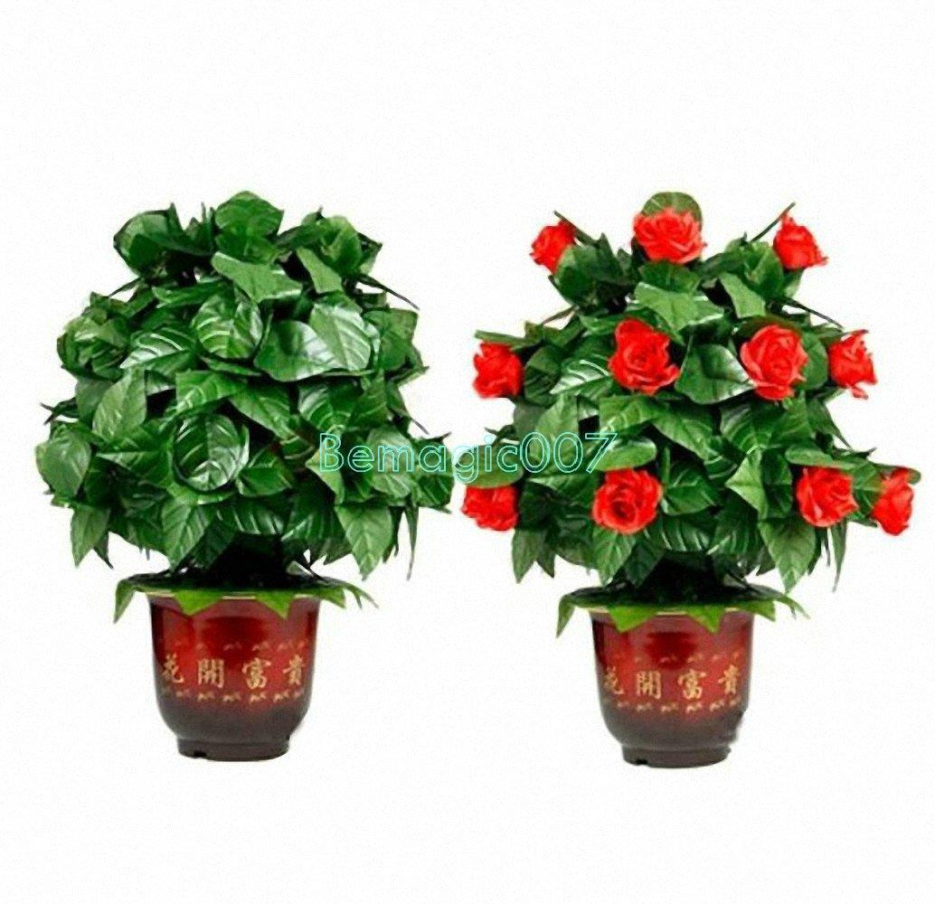 【ギフ_包装】 リモートコントロール咲くフラワーブッシュ20花 Remote-Control Blooming Flower Flowers Bush 20 Bush Flowers -- ステージマジック -- B06VTCDJ1P, マキタドラッグオンライン:4edd080a --- diesel-motor.pl