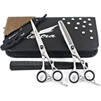 Professional Barber Hairdressing Scissors Hair Cutting Thinning Shears Silver Set For Salon 6.5 Inch With Razor Case Kit – Premium Quality By Electra